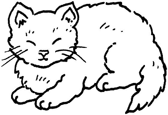 lazy cat clipart - photo #25