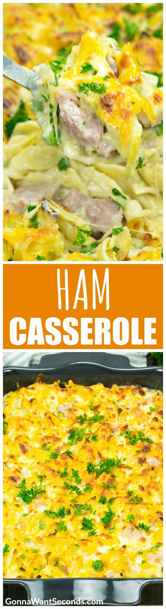 Smoky, salty chunks of ham mingle with curly ribbons of pasta in a decadent cream sauce, loaded with cheese and all the tummy-tempting love of a homemade meal. You won't find any green eggs here, but you'll want to eat this hearty Ham Casserole everywhere!