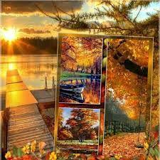 13 besten Herbst Bilder auf Pinterest  Kostenlos Google und