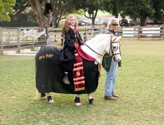 Horse Harry Potter Costume..too cute!