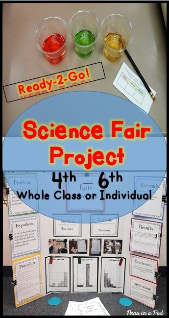 Science Fair Project: 4th, 5th, 6th Grade ~ Print & Go ~ This taste perception science fair project can be done as a whole class or individually. https://www.teacherspayteachers.com/Product/Science-Fair-Project-4th-5th-6th-2474195