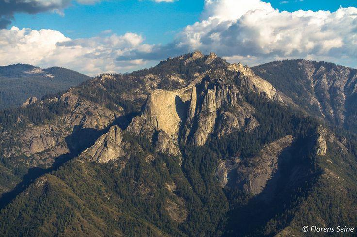 Sequoia park by Florens Seine on 500px
