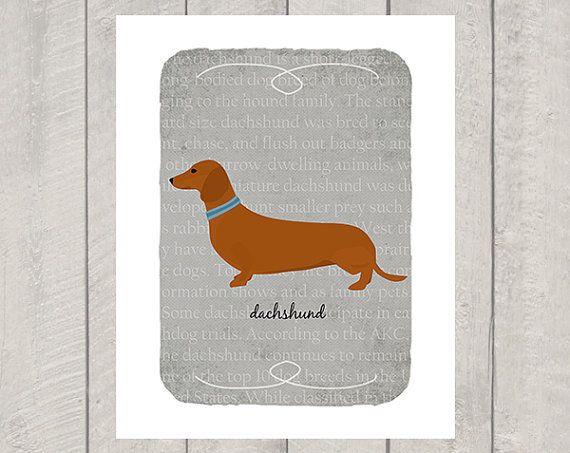 Red Dachshund Breed Custom Dog Art Print