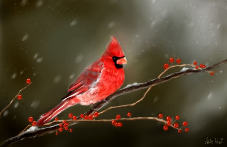 Red Cardinal tattoo idea with my grandma's initials under it.. In remembrance of her <3