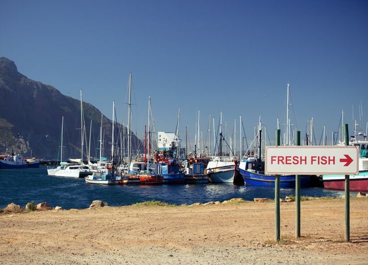 Hout Bay - fresh fish! #Africa #SouthAfrica #CapeTown