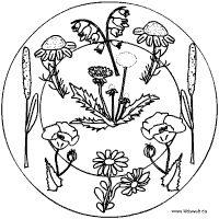 Wiesenblumen-Mandala