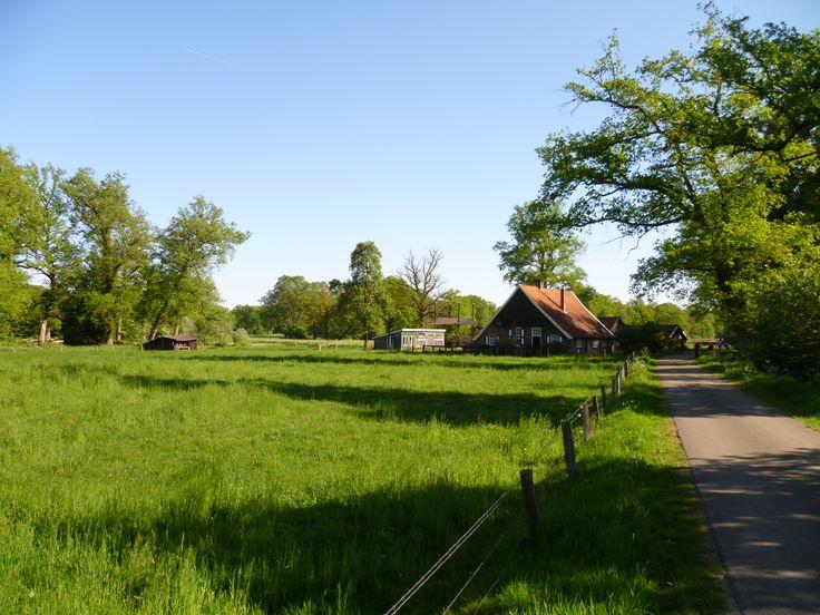 2011-06 Mooi gelegen boerderij op het landgoed Twickel, nabij de watermolen
