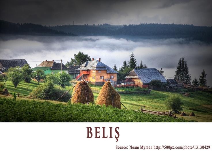 BELIS  https://www.facebook.com/FromTransylvaniaWithLove