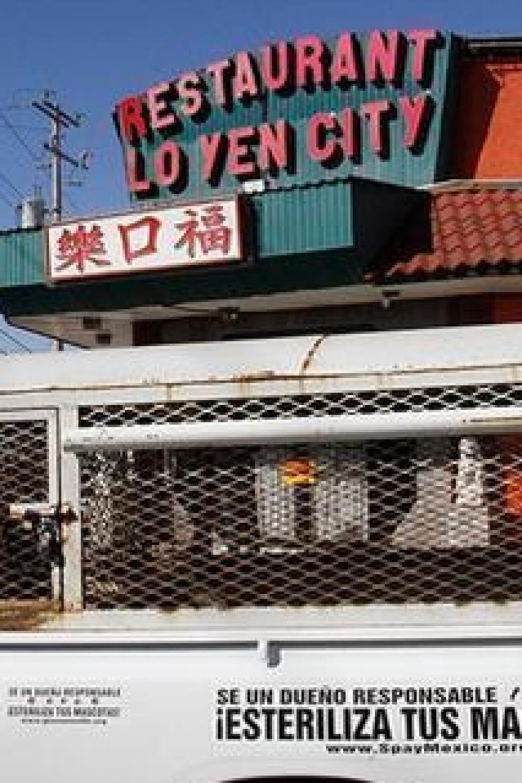Descubren restaurante de comida china en Tijuana que preparaba platillos con carne de perro (EXPLÍCITO)