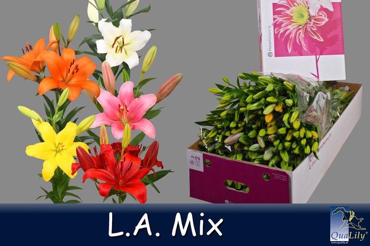L.A. Mix