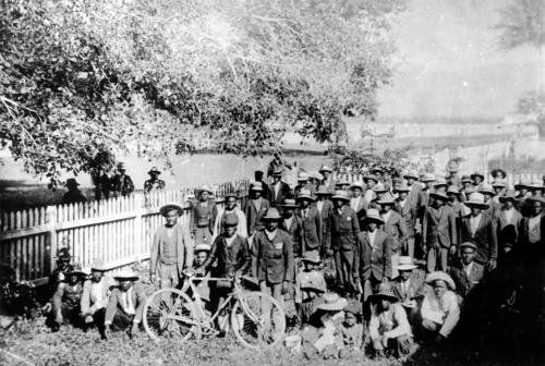 South Sea Islanders under a tree in Cairns 1906 SLQ