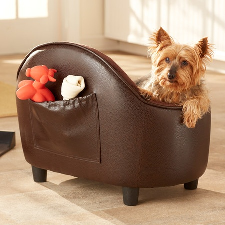 142 Best Nice Place For A Yorkie Images On Pinterest