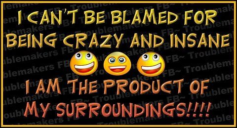 I can't be blamed for being crazy