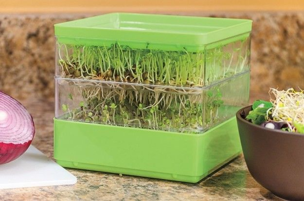 A two-tiered seed sprouter for those looking to add a boost of nutrition to any meal. | 26 Gift Ideas For That One Vegan Friend Or Family Member On Your List