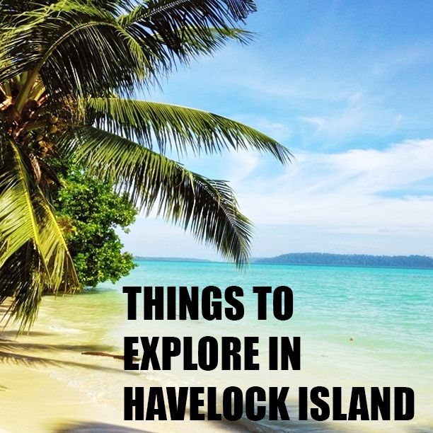Havelock Island: Things To Explore In Havelock Island (With Images