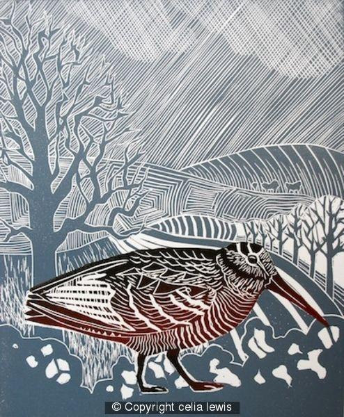 Woodcock - Linocut by Celia Lewis