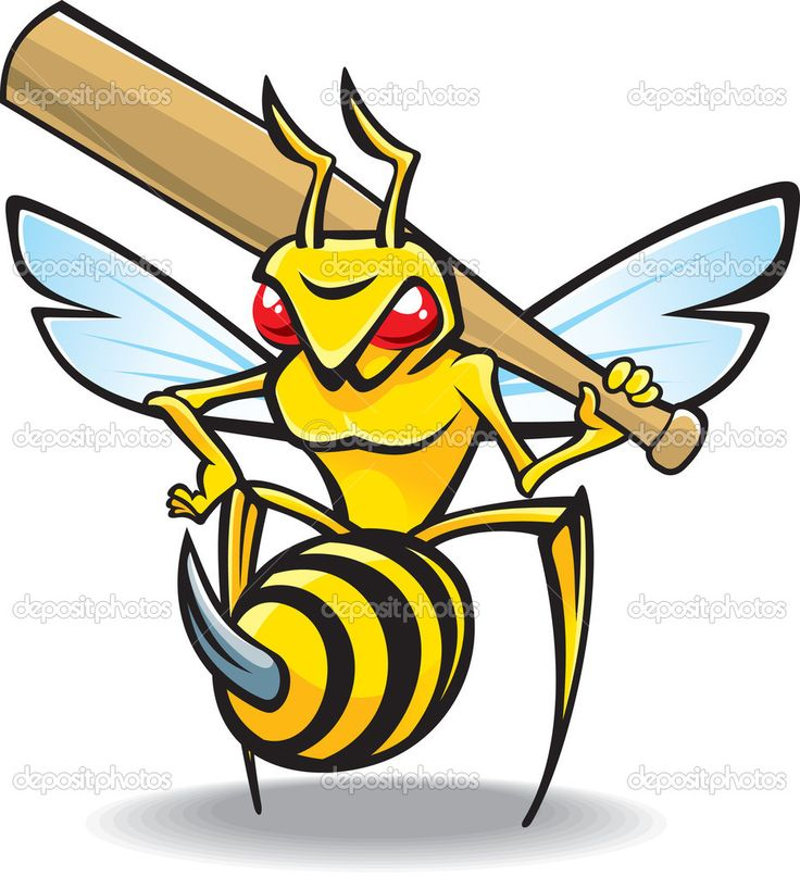 17+ images about Hornet on Pinterest   Sports logos ...