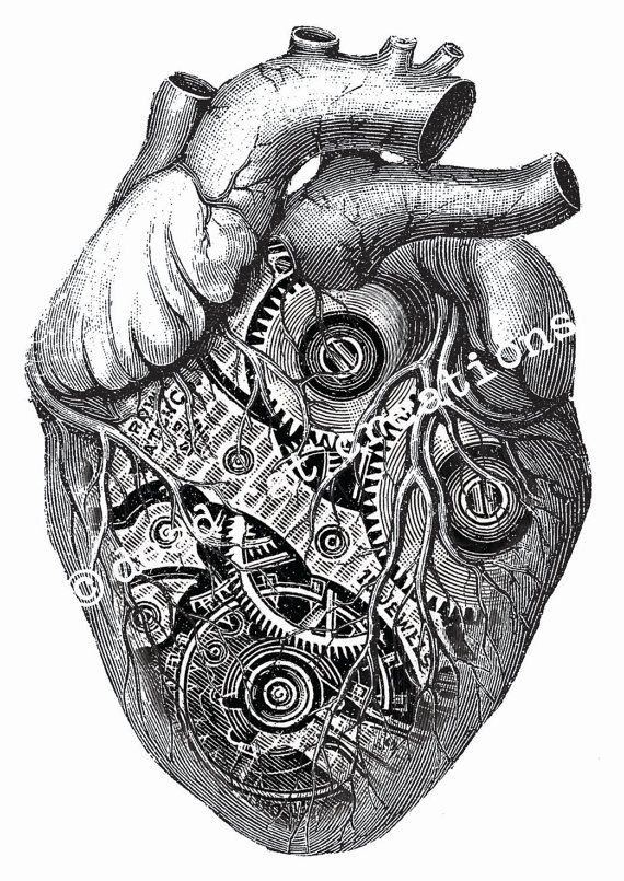 Anatomical Clockwork Heart Valentine Handmade by deadcatcreations