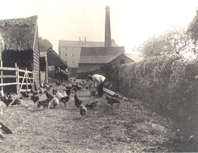 Bexley Mill, Bexley Village, c. 1920