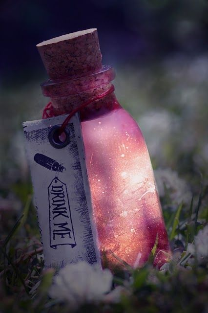 """""""I will show you a love potion without drug or herb, or any witch's spell. If you wish to be loved, love."""" ~ Charles Lindberg"""
