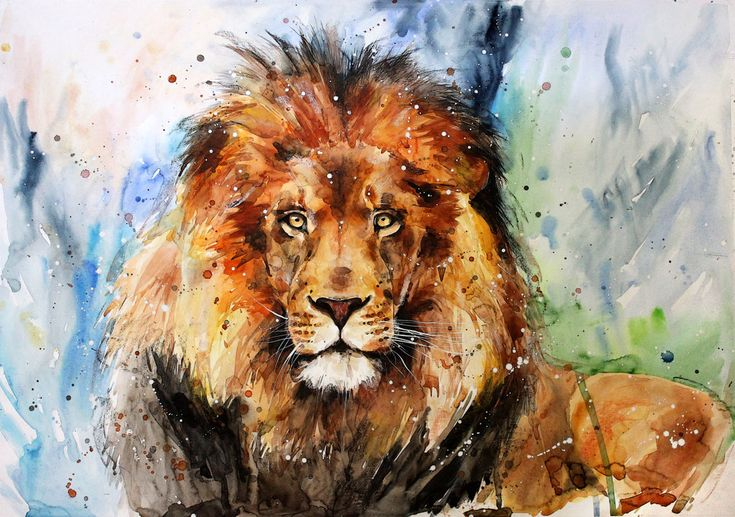 Image result for lion watercolor