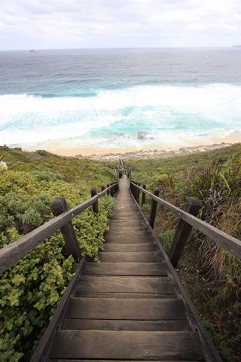 The beach stairs on the Albany Wind Farm portion of the Bibbulmun Track, Albany, Western Australia.  I LOVE THIS PHOTO.
