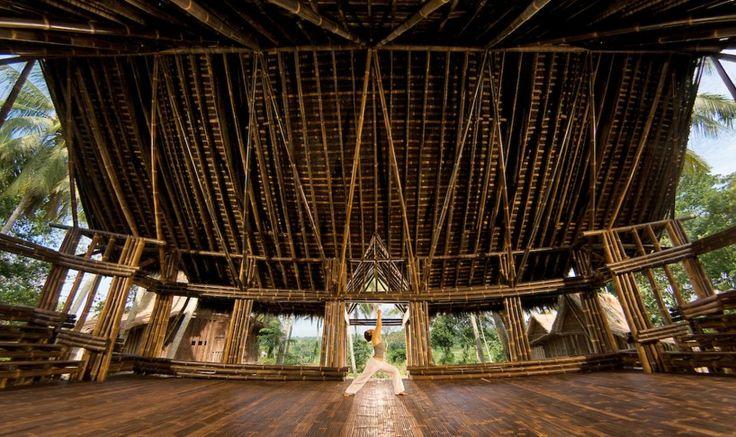 54 besten Bamboo Bilder auf Pinterest Bambus, Architektur und