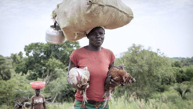 Uganda ontvangt vluchtelingen met open armen. Ze krijgen oa een lap grond van 2500 meter. Hoe zit dat?