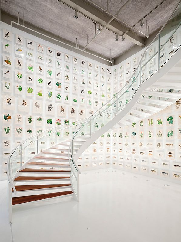 As 300 gravuras exibidas no saguão recebem iluminação de 50 lux