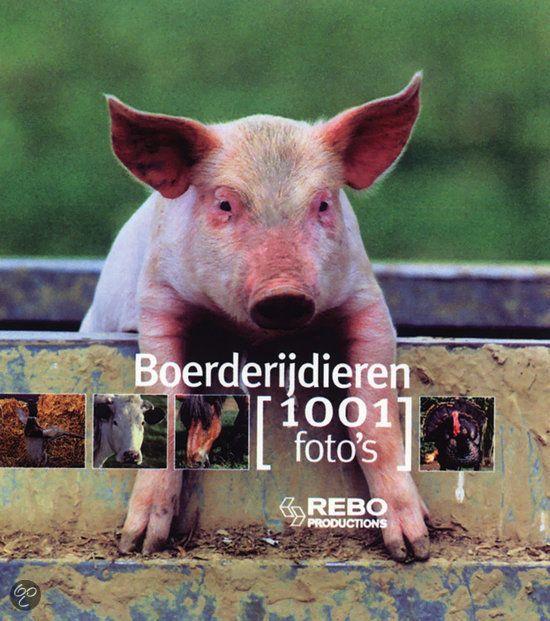 BOERDERIJDIEREN / 1001 FOTO'S - Y. Susic - 9789036624411. Wie raakt er niet vertederd door die eerlijke, schattige dieren? Van de parmantige haan met zijn sierlijke kam en de prachtig gevlekte koeien tot...GRATIS VERZENDING - BESTELLEN BIJ TOPBOOKS VIA BOL COM OF VERDER LEZEN? DUBBELKLIK OP BOVENSTAANDE FOTO!
