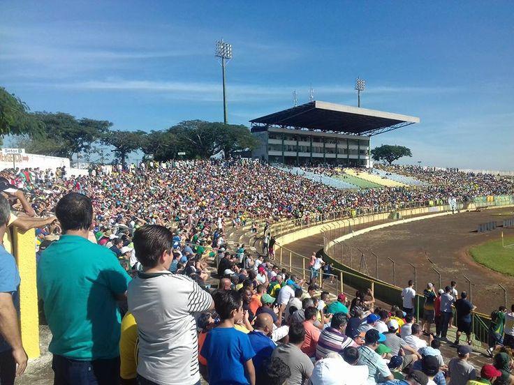 Esporte Clube XV de novembro de Jaú - 2016 #xvdejau