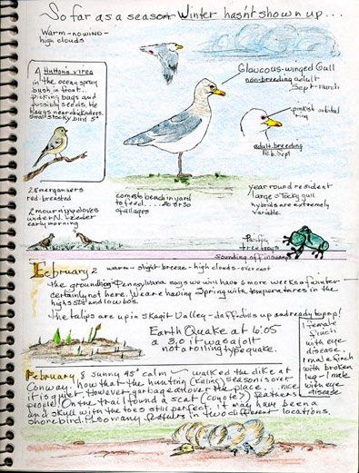 BWD gives you tips on all things bird journaling. Use our tips, guidelines, and journal samples to create your own bird watching journal