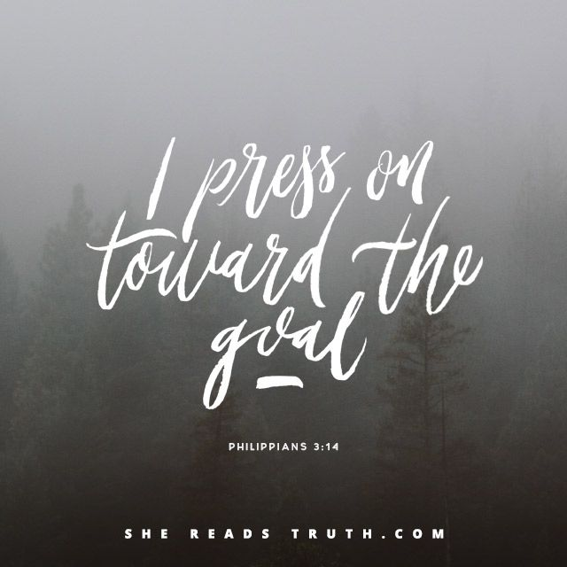 Day 9 of the Philippians reading plan from She Reads Truth | Reaching Forward Join us at SheReadsTruth.com or on the SRT app!