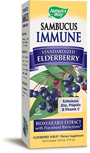 Nature's Way Sambucus Bio-Certified Elderberry Immune Syrup 4 Ounce