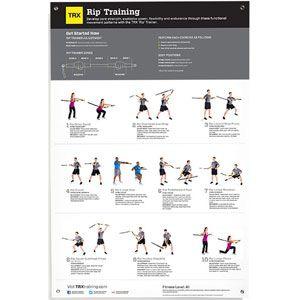 Trx suspension exercises pdf