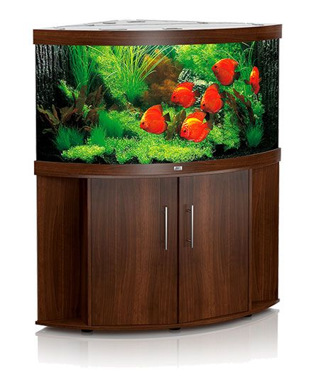 Trigon 350  We have a range of cabinet style aquariums including bowed, corner and squared.  Check Out: http://rentaquarium.co.uk/our-products/ #RentAquarium, #RentanAquarium, #AquariumLondon, #LondonAquarium, #London