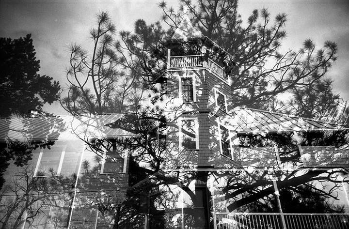 Happy Earth Day! | House And Tree | LC-A | Polypan F 50 Expired 2007 | Kodak D-76 1+1 13 minutes on 20 degree celcius | Kodak Fixer 7 minutes on 20 degree celcius | Kodak PhotoFlo 200 | Epson V300