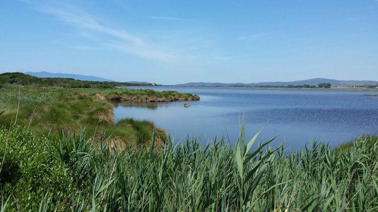 Lago di Burano - Capalbio -