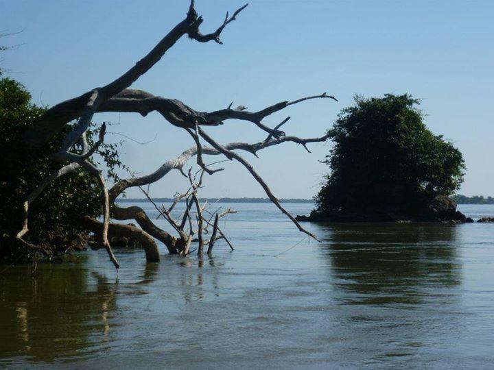 Victor Fernandez: Hermoso dia en las costas del Rio Parana.