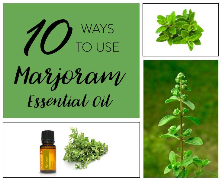10 Ways to Use doTERRA Marjoram Essential Oil