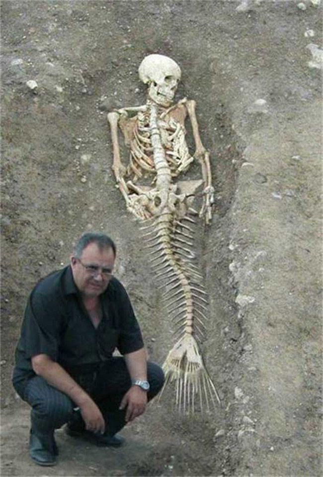 conclusive evidence of the existence of aquatic humanoids