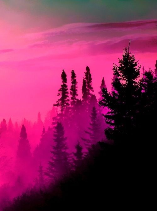 Download 99 royalty free red aesthetic wallpaper. Pin by 💜Rachael Linnell💜 on Dendritic Arborization   Pink