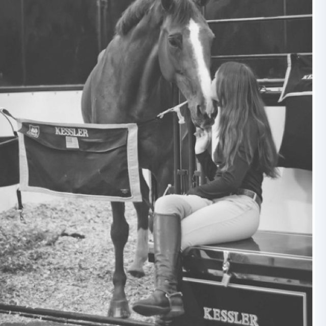 how our relationship with horses has changed