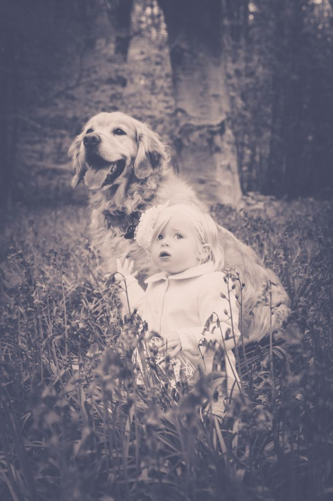 Hampshire Family Photography| child photography| bluebell mini session| little girl photography| little girl with dog
