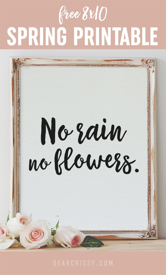 Free Printable Quote 8x10 'No Rain, No Flowers' Pretty Free Printable Quote 8x10 | Spring Quote | No Rain No Flowers | Instant Download