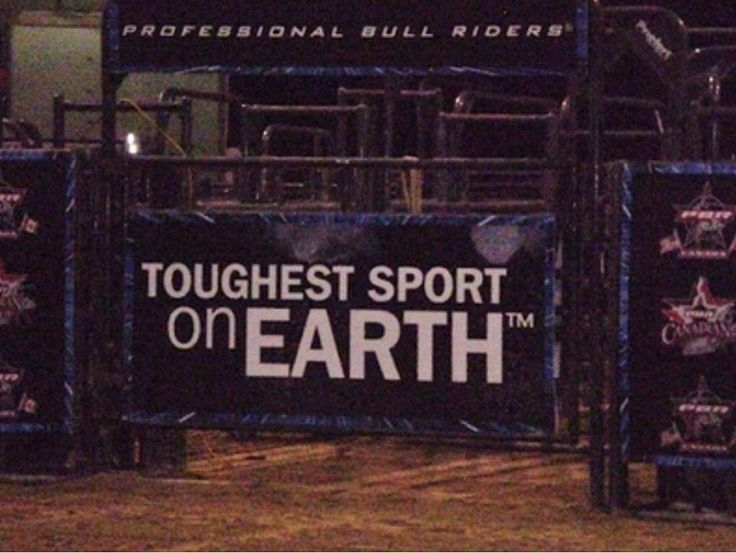 Funny Bull Riding Quotes: 36 Best Images About Bull Riding On Pinterest