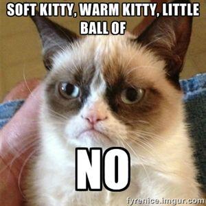 soft kitty, warm kitty, little ball of no | Grumpy Cat | Meme Generator