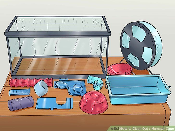 7 Effective Tips How To Clean A Hamster Cage Small Pets For Kids Hamster Cage Hamster