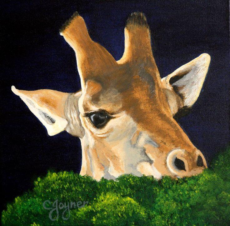 Giraffe Head (CJoyner)