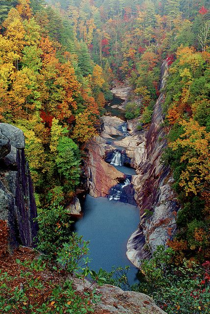 Tallulah Gorge in Georgia.: Georgia Travel, States Parks, State Parks, Fall Colors, Tallulah Gorge, Brown Guide, Beautiful Places, North Georgia, Georgia Beautiful
